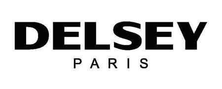 logo valise delsey paris