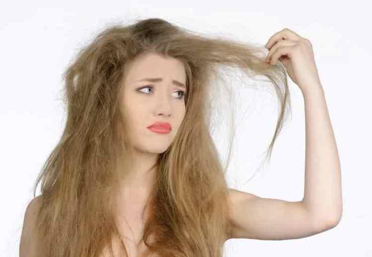 meilleur shampoing pour cheveux secs